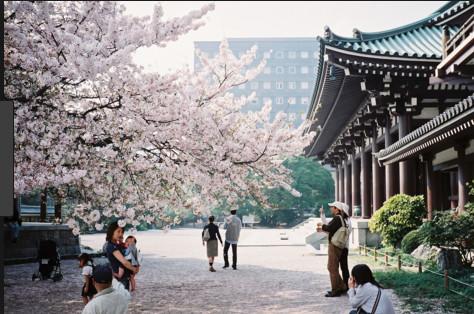 À quels évènements assister pendant un séjour à Tokyo ?