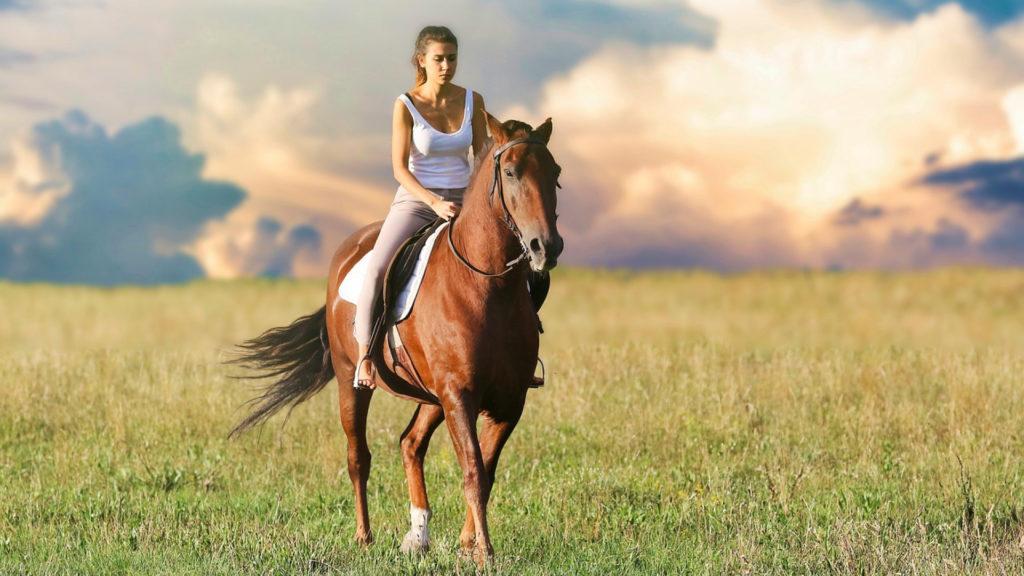 Equitation : Quand monter sur ses grands chevaux est bon pour le moral !