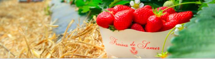 Dans les Hauts-de-France, la recette du bien-être se trouve aussi dans l'assiette !